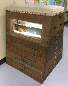 むろと廃校水族館の跳び箱水槽